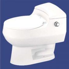 توالت فرنگی آرمیتاژ مدل آریا 60